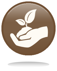 Hand Holding Plant Icon